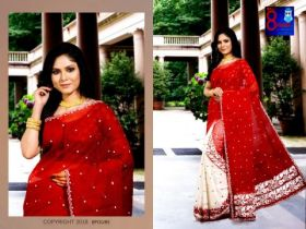Resham Check with Parshi Embroidery Work and Embroidery with Blouse Piece.