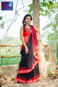 Handwoven Double Ikkat Cotton Saree